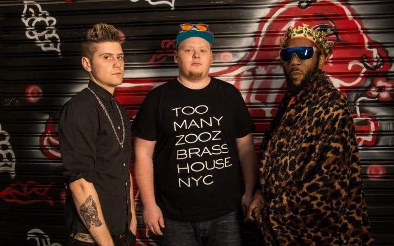 too-many-zooz-press-photo-2-color-by-michael-weintrob